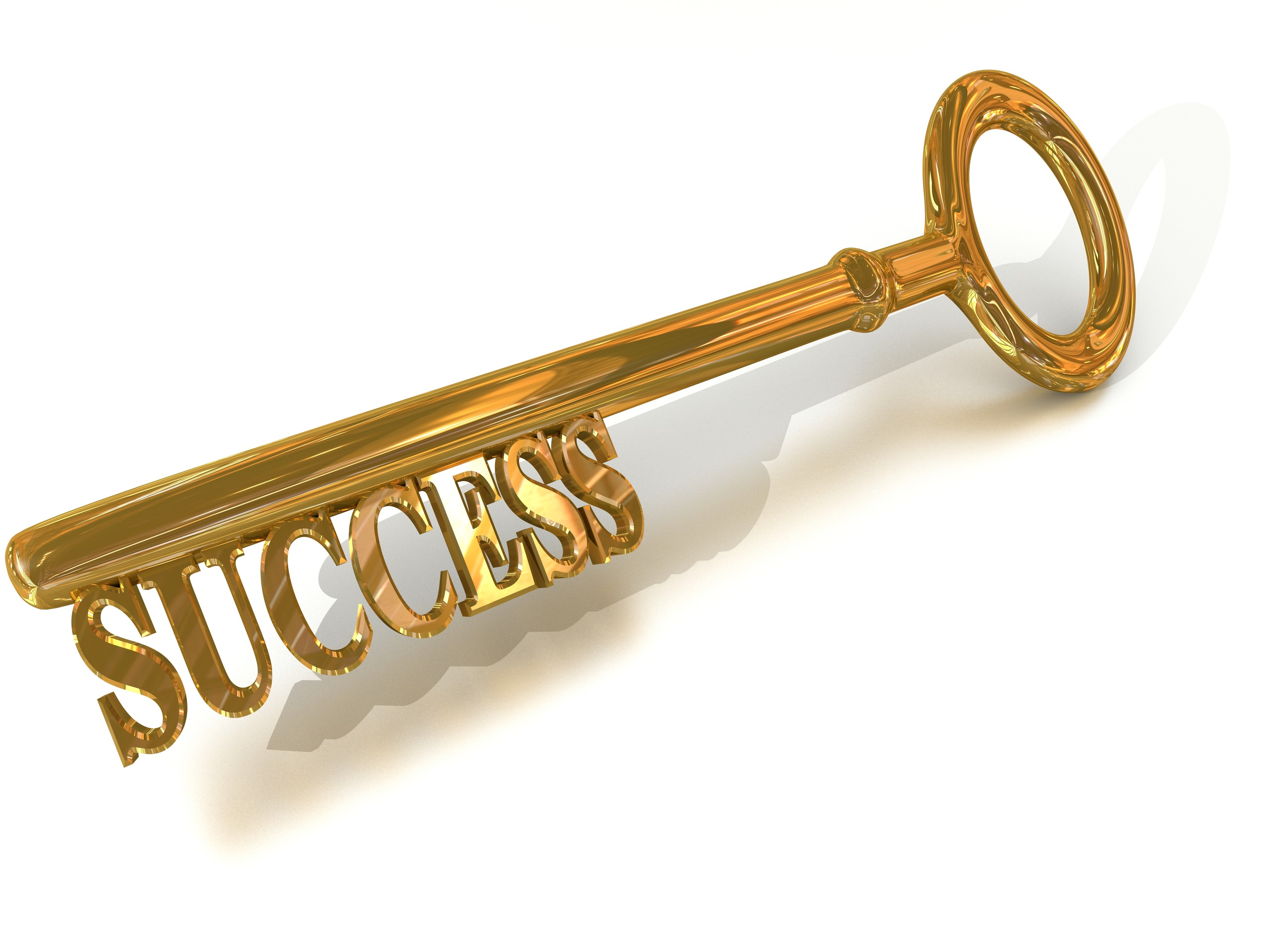 key to succes Key to success : welcome to the key to success website if you are from a school, including a school sixth form or 16-19 academy or free school, continue to the school login page if you are from a local authority, continue to the la login page.