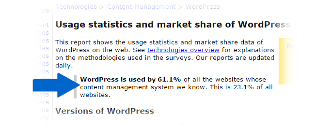 Usage-Stats_Wordpress