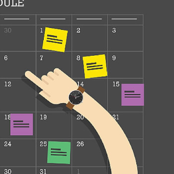 Decide on a publication schedule