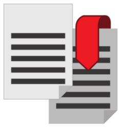Digital Product: PDF
